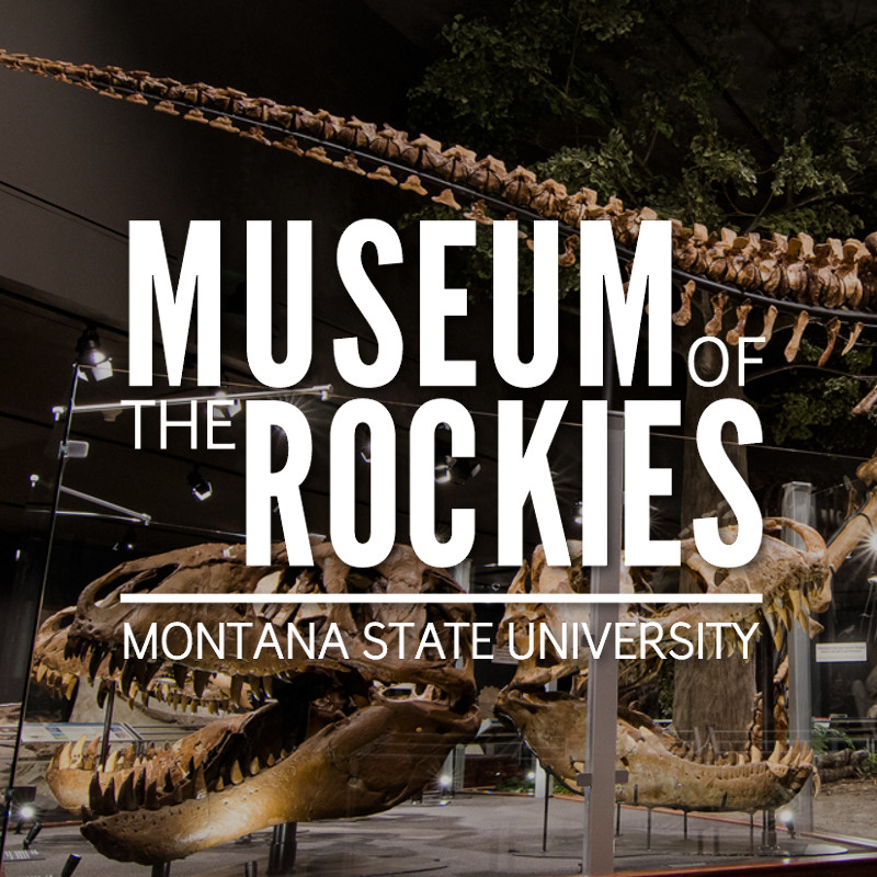 Museum of the Rockies logo over image of a dinosaur skeleton